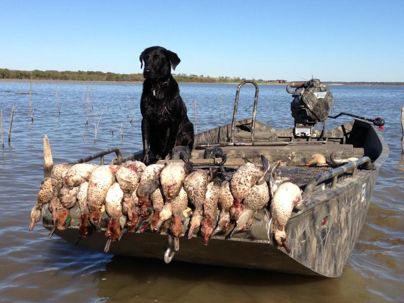 My business texas duck hunting for Fish farms in texas